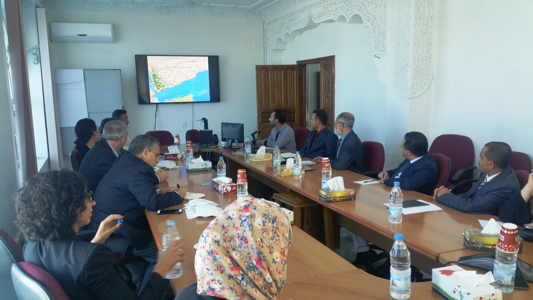 SFD and UNDP meeting underlines enhancing partnership